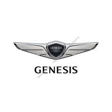 Комплект классической обычной тонировки для Genesis