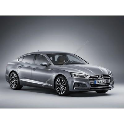 Купить силиконовую тонировку на статике для Audi A5 4 двери 2 поколение, хэтчбек, F5 (12.2016 - н.в.) можно в магазине Тонировка-РФ.ру