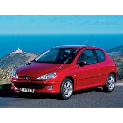 Купить силиконовую тонировку на статике для Peogeot 206 Coupe 3d 1 поколение 1998-2009 можно в магазине Тонировка-РФ.ру