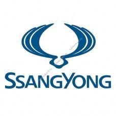Каркасные автошторки на SsangYong